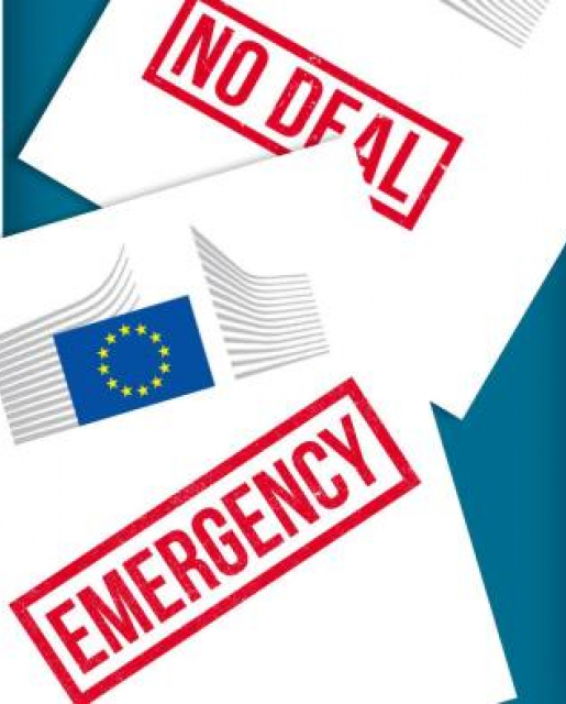 no deal emergency leaflet