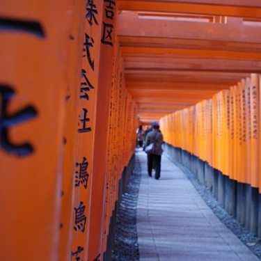 Path framed by multiple torii gates