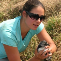 Annette Fayet with young puffin