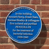 blue plaque commemorating penicillin scientists